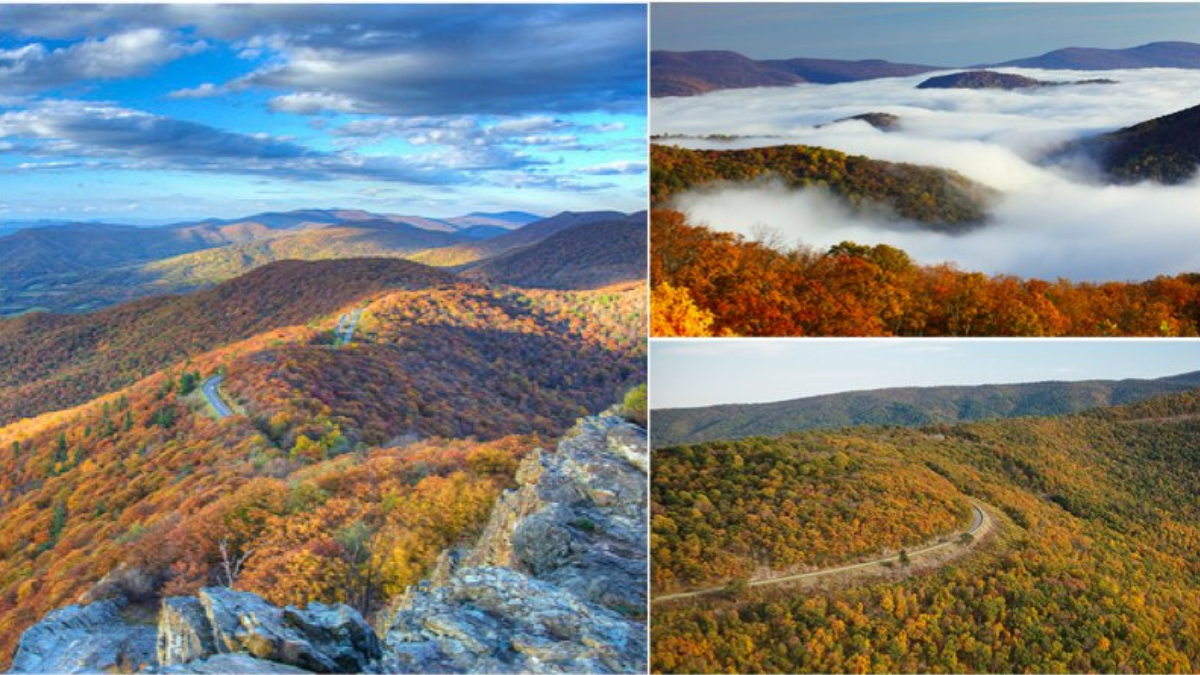 Skyline Drive is 105 miles of pure scenic driving bliss