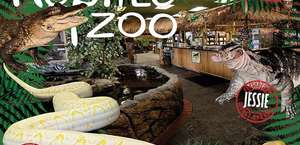 The Reptile Zoo