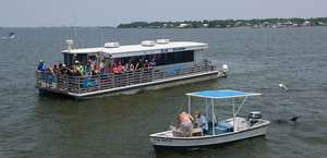 Blue Dolphin Cruises