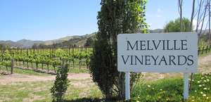 Melville Vineyards & Winery