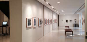 Ansel Adams Collection
