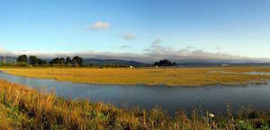 Arcata Marsh And Wildlife Sanctuary