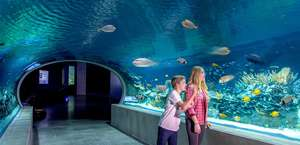 Ody Sea Aquarium