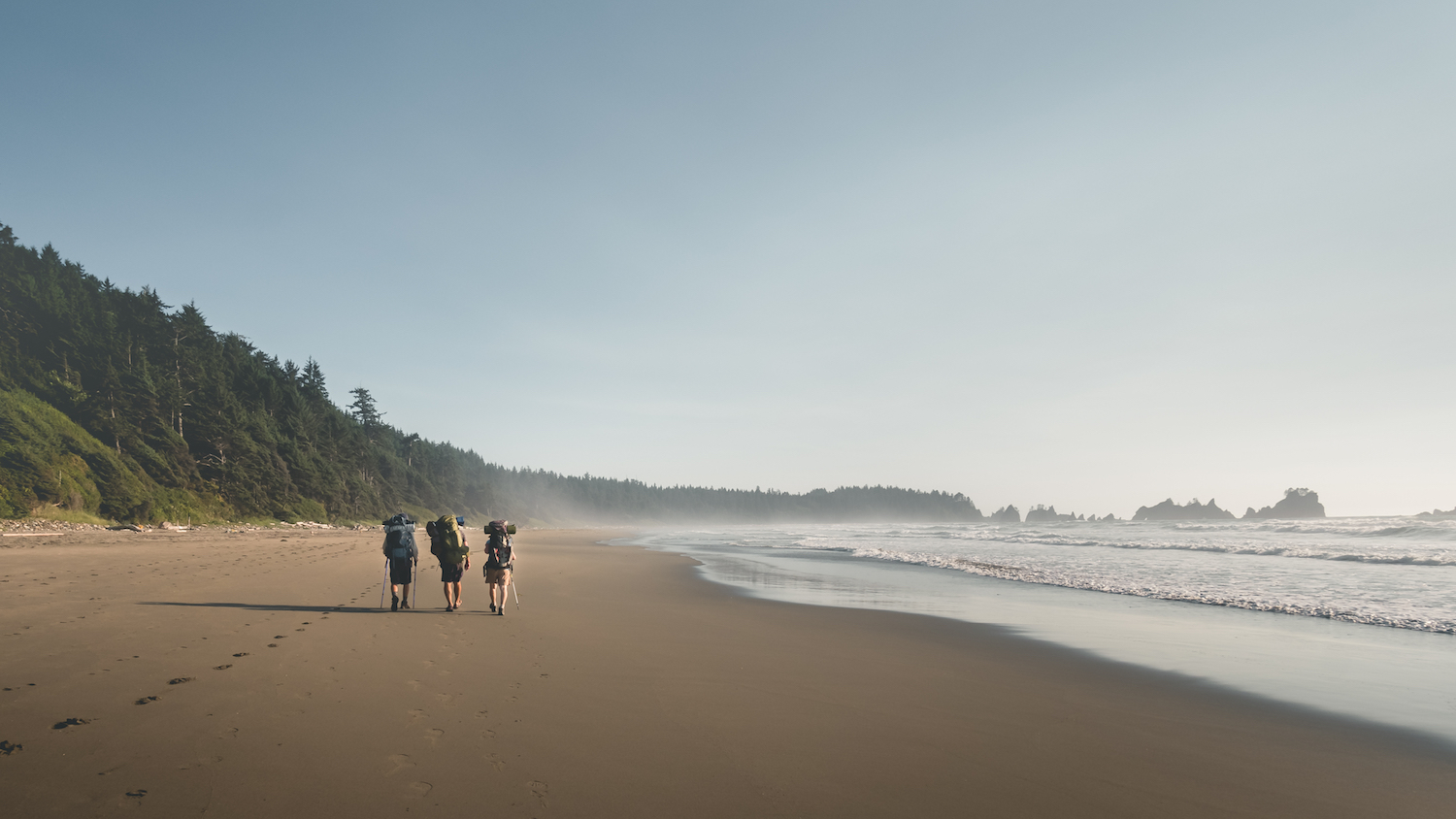 Hikers are hiking on the Shi Shi beach trail along the pacific coast in Olympic National Park, Washington State, USA