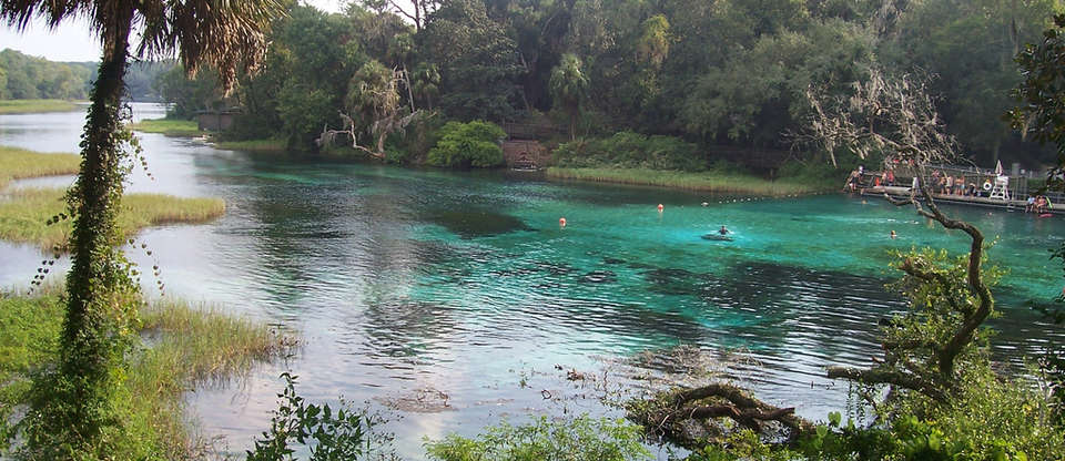 The Best-Kept Secret Swimming Holes of Central Florida